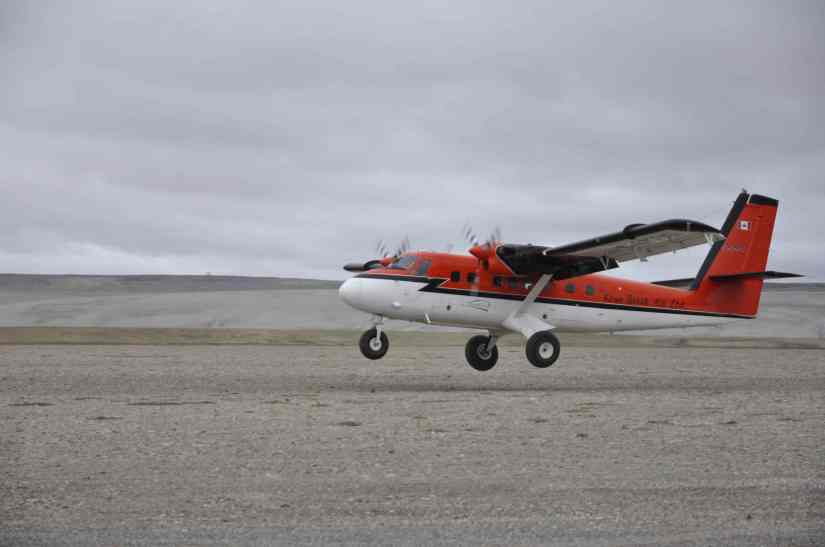 twin otter small