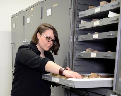 Dr. Fraser examines Quaternary horse post-crania